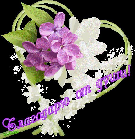 найдите спасибо открытки орхидеи преданию