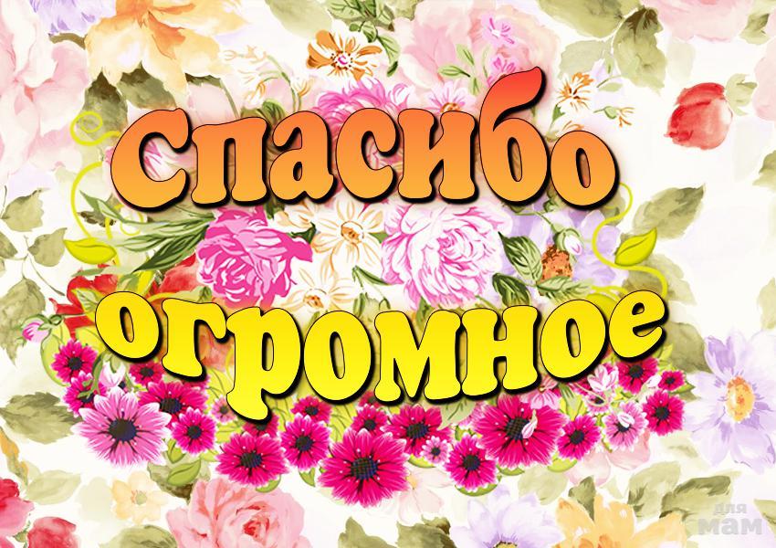 Картинки с надписями большое спасибо, россии открытка