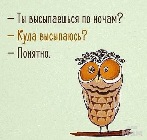 https://www.mam4.ru/media/upload/user/7685/99/image.jpg