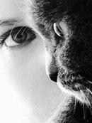 Lady-Cat-Sofi